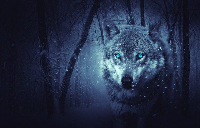自閉症、ADHDは集団行動が苦手 一匹狼、セルフエスティーム